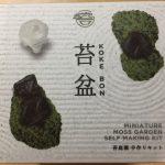 苔でミニ盆栽が簡単に作れる!手作りキット「苔盆」レビュー